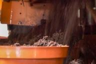 Grupa Kapias - doniczkarka Javo - napełnianie doniczek substratem