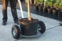Grupa Kapias wózek do transportu roślin w dużych pojemnikach