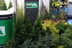 Grupa Kapias - stoisko na Wystawie Zieleń to Życie 2016