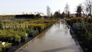 Grupa Kapias Centrum ogrodnicze