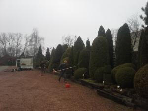 Grupa Kapias cięcie roślin ozdobnych