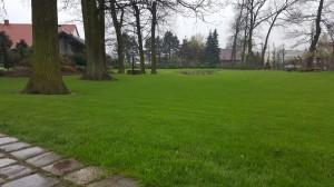 Grupa Kapias wiosna w ogrodach